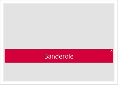Display_formate_website_banderole